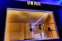 Schallkabine: Neuman TLM 103 - Rode NTK - Audio Technica 4040